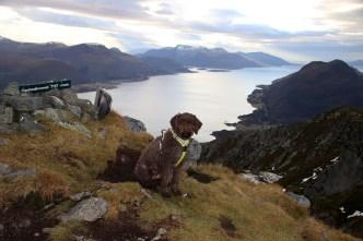 On top of Oppstadhornet (3)