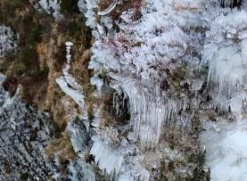 Ice art (I)