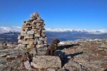 On top of Snøfjellet