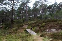 On a path up Marafjellet