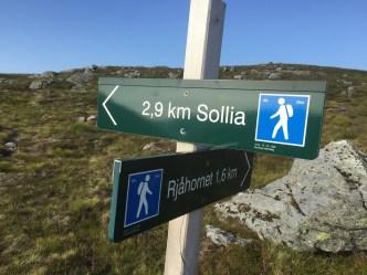 We've put of MANY like these on Gurskøya