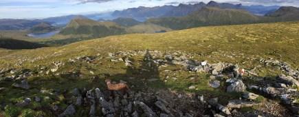 View from Garnestua