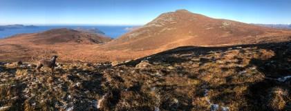 View towards Kraksethornet - left