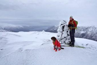 On top of Lingsetfjellet