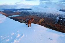 Above Ringstaddalen valley