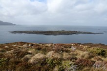 Kråkøya