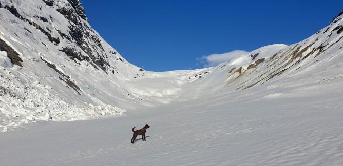 Anne-cam: Below Jostedalsbreen glacier (1)