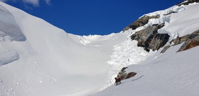 Anne-cam: Below Jostedalsbreen glacier (4)