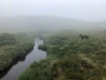In unfamiliar terrain