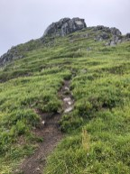 A steep and nice trail