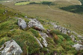 Steep descent to Kvia