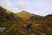 The ridge to Sollia ahead