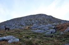 Steep terrain!