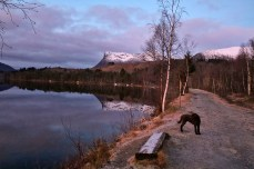 Along lake Hovdevatnet