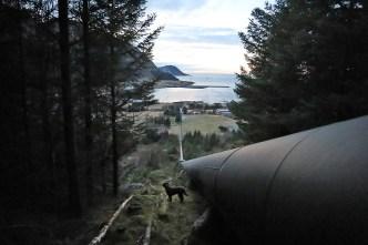 Avoiding the boring Sædalen road