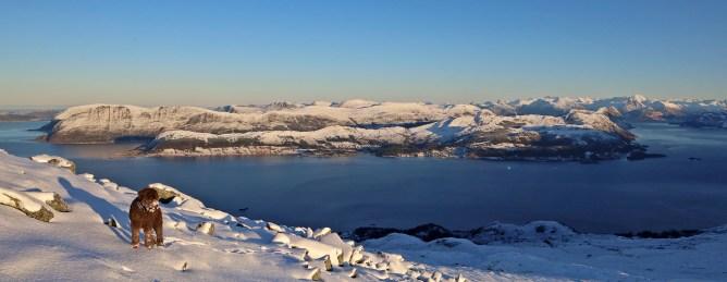 View towards Gurskøy island, where we live