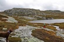 Below Nybufjellet