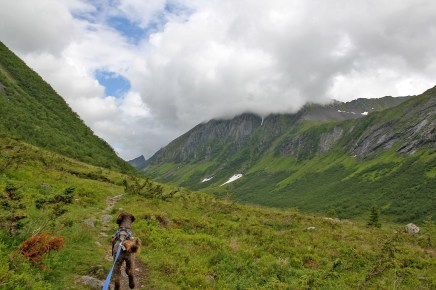 Into Langedalen