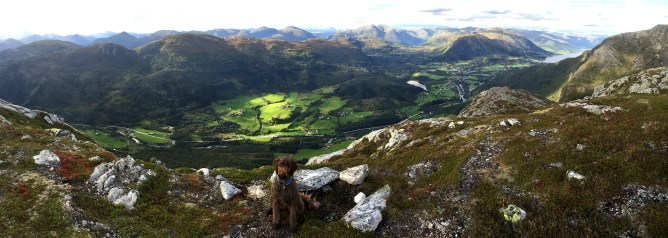 Halvgjerda summit view (4/4)