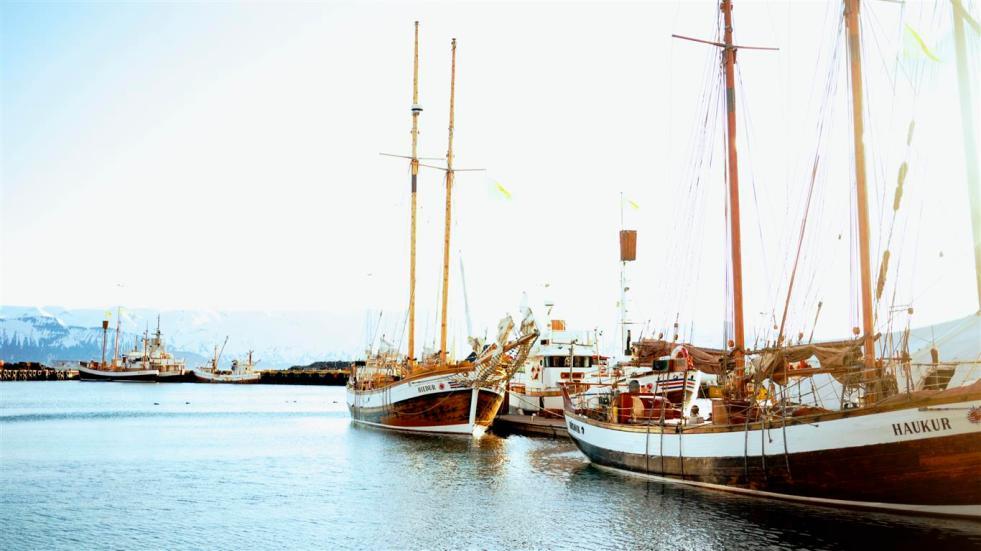 № 1 - Husavik, Iceland