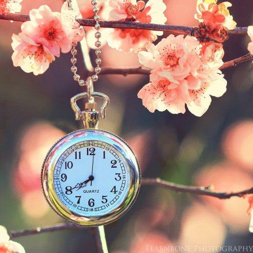 eternal_spring_by_flabnbone-d7y33bf