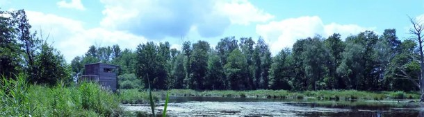Wanderkarten Premiumwanderwege Naturpark Maas-Schwalm-Nette