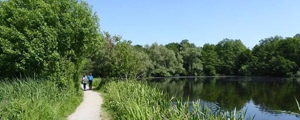 Premiumwanderweg Nette-Seen