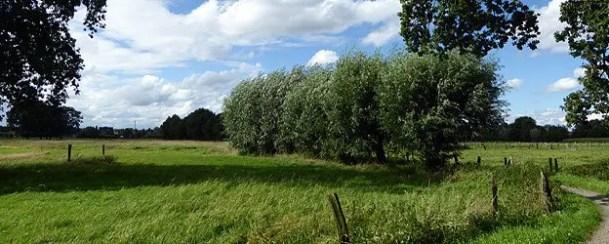 Wandern am Niederrhein in Nettetal