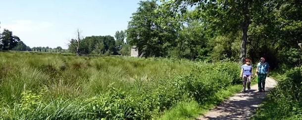 Wandern im Naturpark Schwalm-Nette
