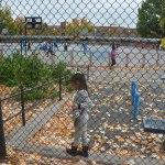 is it autumn in America