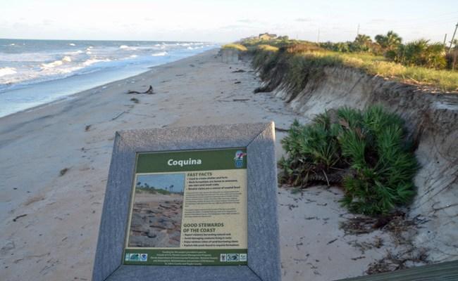 flagler county government beach restoration