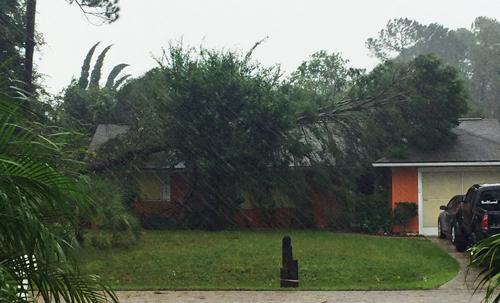 hurricane matthew palm coast