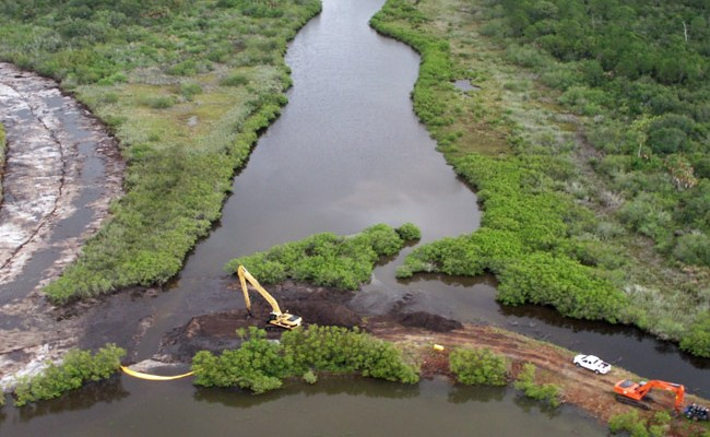 What wetland restoration looks like in St. Johns River Water Management District's briefings.