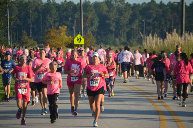 Time for the Pink Army 5K from Florida Hospital Flagler through Town Center this Sunday. See below. (© FlaglerLive)