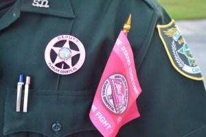 sheriff pink badges