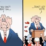Bruce Plante, PoliticalCartoons.com voting rights