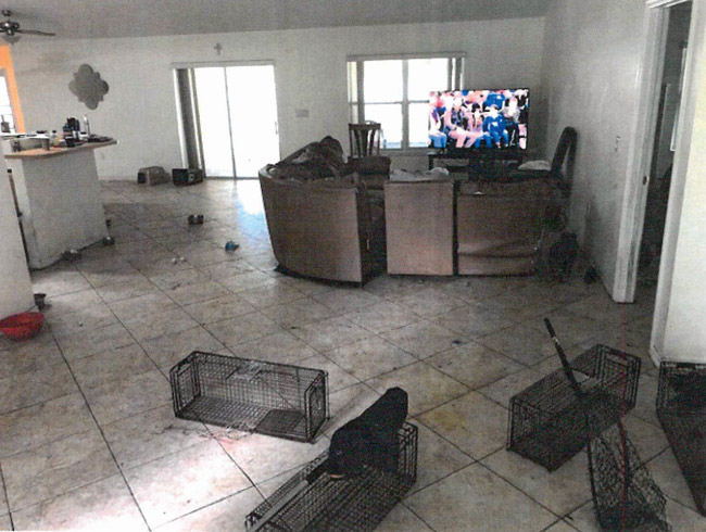 A court ordered the Steeles to maintain the W-Section home in good order for the four animals conditionally returned there. Above, the living room at the house as animal control  officials and sheriff's deputies found it in April, when 18 animals were in the house.