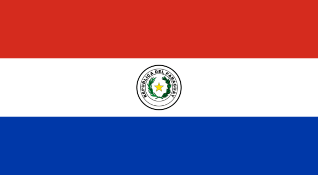 Image result for flag South paraguaj