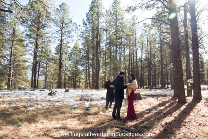 flagstaff winter forest wedding elopement