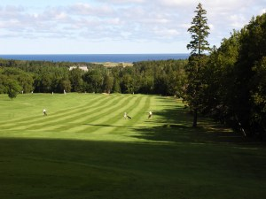 The view off the tee on the 3rd hole at Green Gables GC