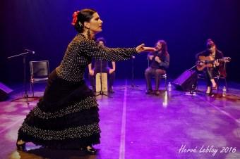 Momentos Flamencos (Maison de la Culture Ahuntsic, Montréal) 15 novembre 2016