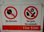 El durian está prohibidisimo en lugares cerrados