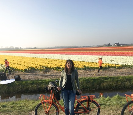 Exploring the tulip garden on a bicycle!