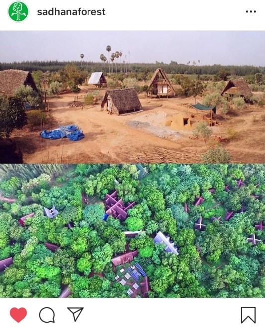 Sadhana forest transformation