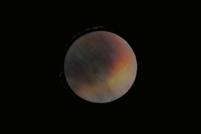 """Peach of a Moon - by David Redfern. """"Putting my artists hat on I enlisted the help of a peach and Photoshop and invented a passable image of what I saw in the early hours."""""""