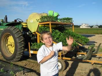 lets-start-planting
