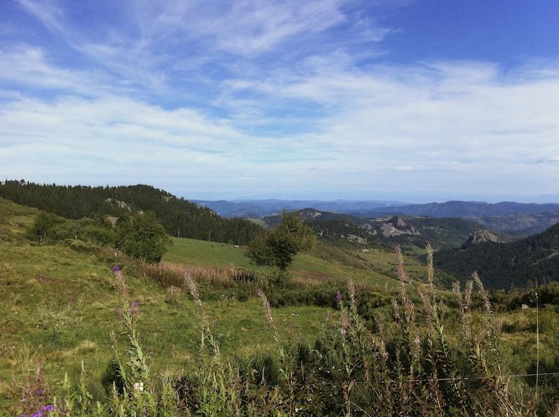 Near Mont Mezenc