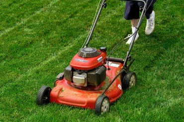 walk behind mower