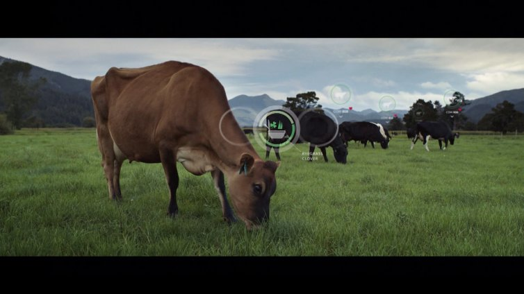 Smartest Farmers Tech