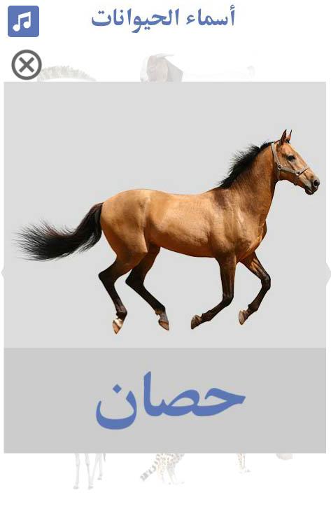 تعليم-أسماء-الحيوانات-حصان